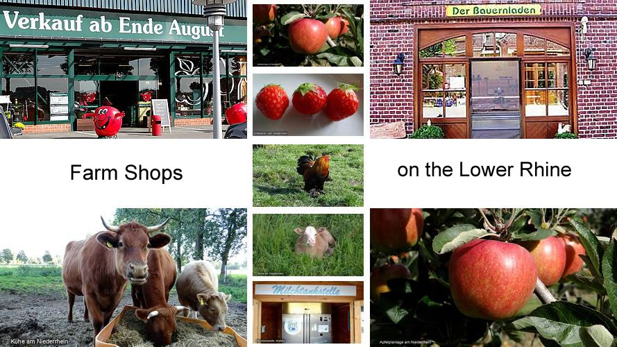 Farm Shops Lower Rhine