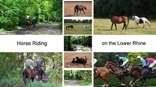 Horse Riding Lower Rhine