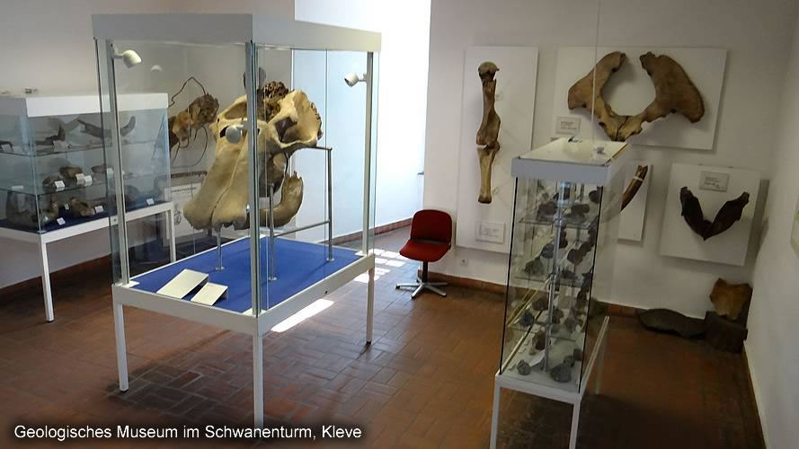 Geological Museum Kleve